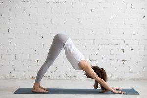 Vinyasa yoga teacher training